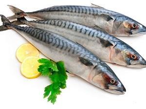 рыбные паразиты фото