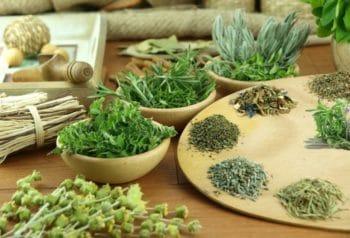 Травы при энтеробиозе для настоев и отваров