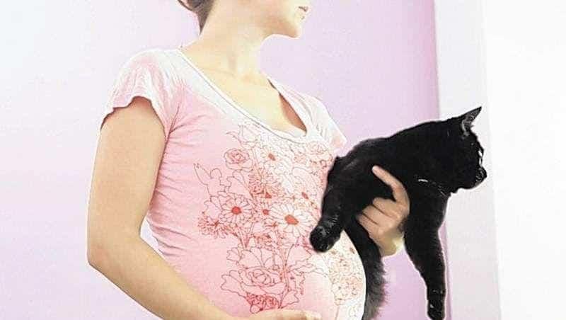 - анализ на токсоплазмоз у беременных