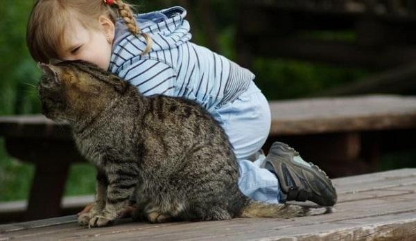 токсокароз симптомы и лечение у детей