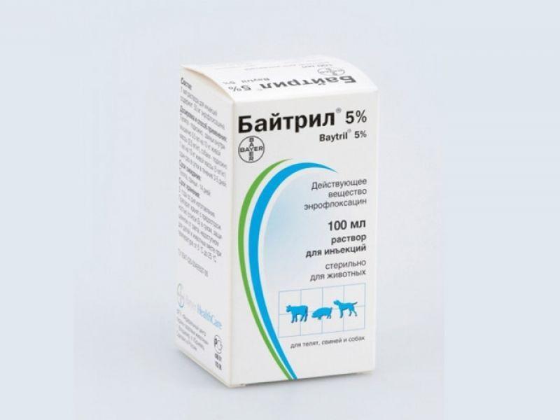лечение кокцидиоза у кошек