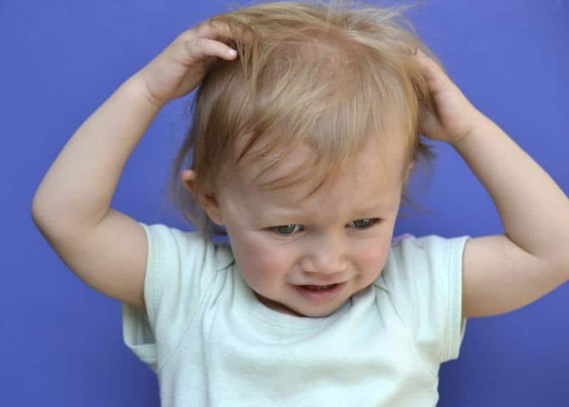 почему чешется голова вшей детей